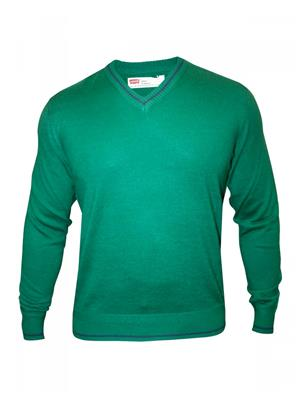Levis 17208-0000 Green Full Sleeve V Neck Men Sweater