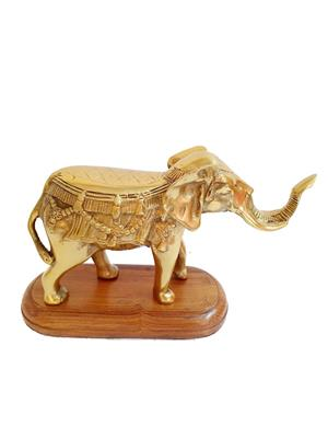 AM Vaasiti AMV56239RYZ Golden Elephant in Brass