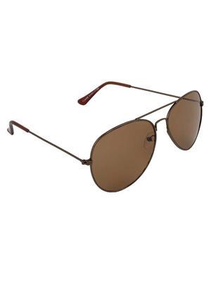Allen Cate DarkBrown Aviator Sunglasses