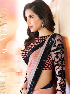 Brijraj Fashions 20-S Brown Saree