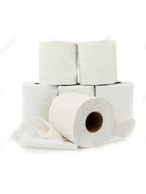Todayin Hu1099 Toilet Paper Roll Set Of 6
