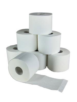 Todayin Hu1100 Toilet Paper Roll Set Of 10