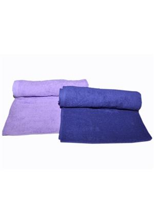 Bombay Dyeing Limited Edition R2 Purple/Blue Towel