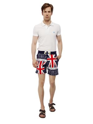 13TH Avenue MCS02_FLAGPRINT Blue Men Shorts