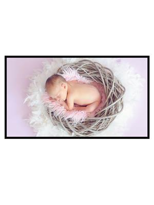 Shoping Inc POS1194 Baby Sleeping In Basket Laminated Framed Poster