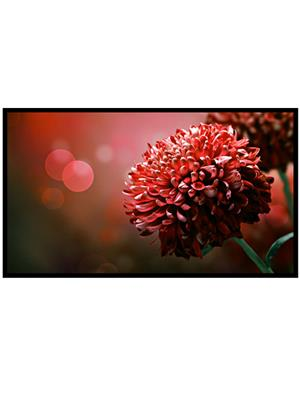 Shoping Inc POS1631 Flowers Bloom Red Decorative Laminated Framed Art