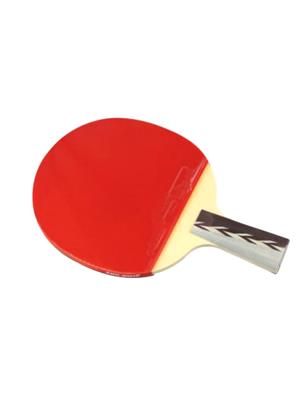 Todayin 16 Multicolored Table Tennis Bat