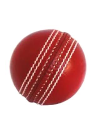 Todayin 31 Red Leather Cricket Ball