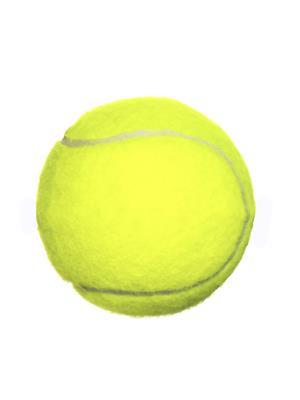 Todayin 37 Green Tennis Ball Set Of 2