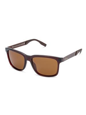 Velocity VCP14-BRN Brown Unisex Wayfarer Sunglasses