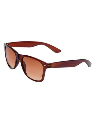 Allen Cate DSBrown Wayfarer Sunglasses