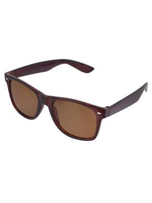 Allen Cate DarkBrown Wayfarer Sunglasses
