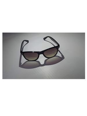 TD tdsg167 Light Brown Men Sunglasses